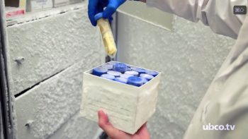 The research team developed a standardized procedure for storing stool samples.
