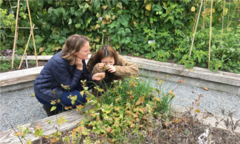 Participants in the Sustainable Communities Field School spend time reacquainting themselves with the plant world at the UBC Botanical Garden.