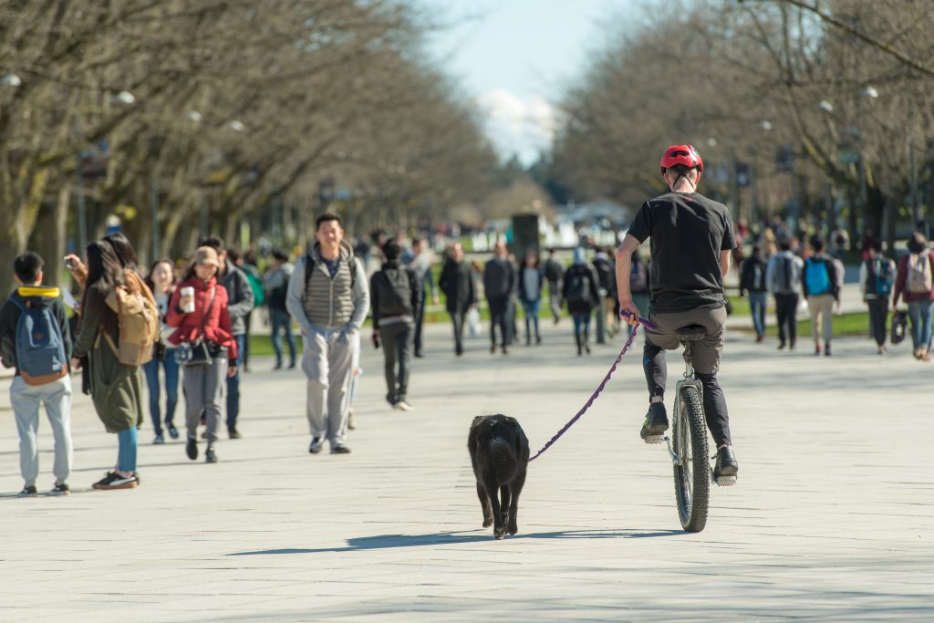 Holm and his dog Loki can often be spotted on campus.